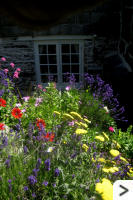 Colourful summer rockery which can be viewed from the kitchen (shown) and bedroom windows.